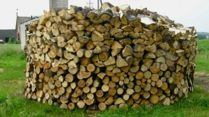 A pile of wood outside Antanina's house. Many rural Lithuanian homes are heated by wood burning. Photo by Laima Vincė.